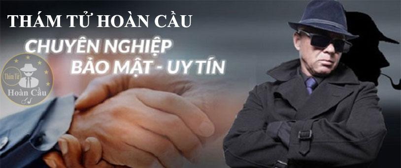 Thám tử Đà Nẵng VDT (Công ty TNHH cung cấp thông tin Việt Nam) Hải Châu, Đà Nẵng