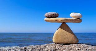 Mục đích sống của bạn là hạnh phúc, thành công hay cống hiến?