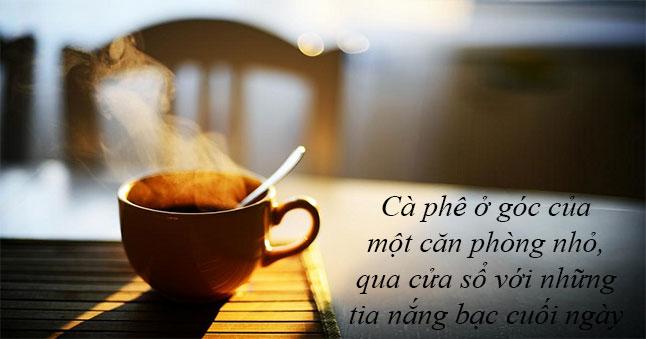 Đàn ông rất giống cà phê, bởi nếu là loại ngon sẽ làm bạn mất ngủ